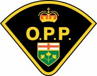 OPP Remind Drivers to Watch for Deer